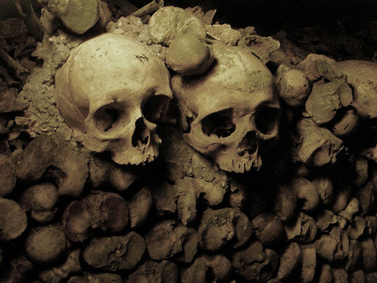 Обои черепа, Катакомбы, кости. Разное foto 11